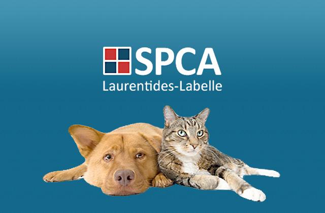 SPCA de Laurentides-Labelle